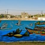 Beit Hanon Indiegogo